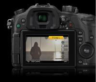 Активационен ключ Panasonic DMW-SFU1GU за GH4