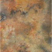 Рисуван фон Dynaphos A5190 3 x 6 м
